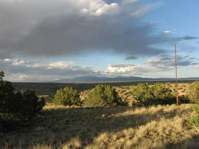 107 GOLDMINE RD, Cerrillos, NM 87010 - Photo 2