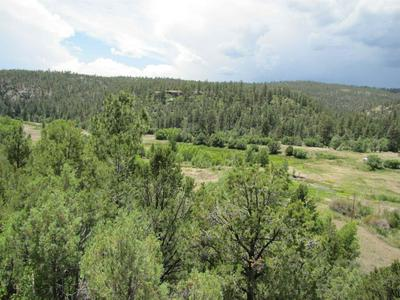 3 LOTS NM 519 LAS TABLES, Vallecitos, NM 87581 - Photo 1