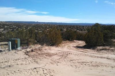 LOT 3 THREE RIVERS ESTS, Medanales, NM 87548 - Photo 2