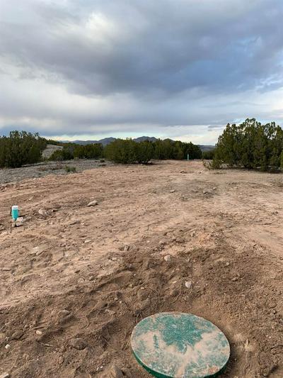 124 ROCINANTE, Cerrillos, NM 87010 - Photo 2