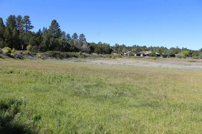 TBD-1 & 2 VALDEZ ROAD, Penasco, NM 87579 - Photo 2