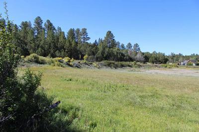 TBD-1 & 2 VALDEZ ROAD, Penasco, NM 87579 - Photo 1