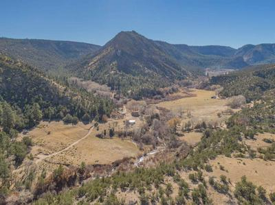 595 COUNTRY ROAD 198, Canones, NM 87516 - Photo 1