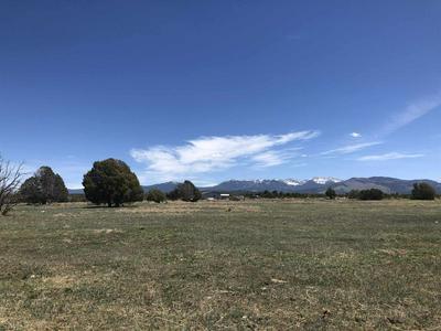 PARCEL B CR 77A, Truchas, NM 87578 - Photo 2