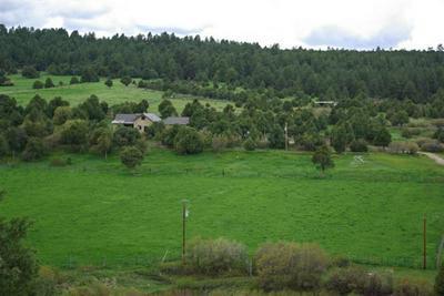 130 PACHECO ROAD, Penasco, NM 87553 - Photo 2