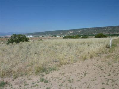 TRACT C LOT 3 OF FNRT, LOS LUCEROS, NM 87582 - Photo 1