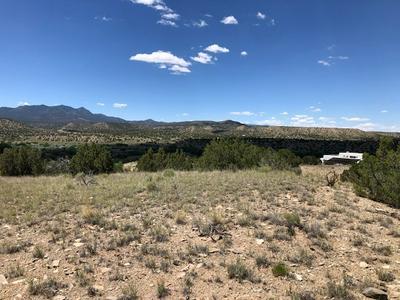 10 LITTLE HILLS CT, Cerrillos, NM 87010 - Photo 2
