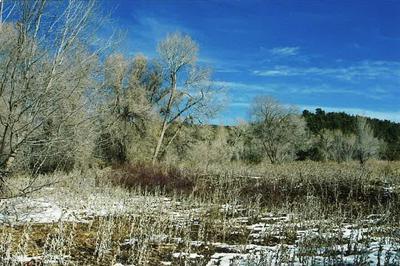 78 & 80 PLACITA VIGIL AKA SM B-49, Pecos, NM 87552 - Photo 2