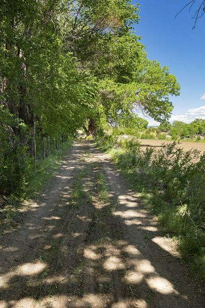 # SILE ROAD FARM LAND, Sile, NM 87041 - Photo 1