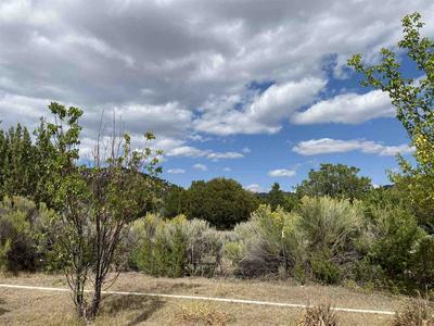 100 COUNTY ROAD 341, Ojo Caliente, NM 87549 - Photo 2