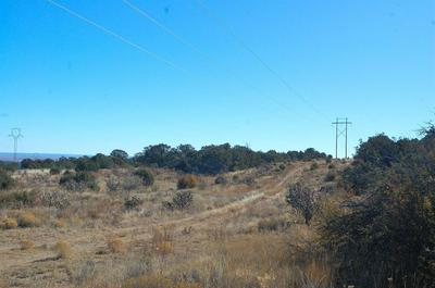 224 COW MILL RD, STANLEY, NM 87056 - Photo 1