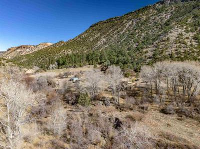 595 COUNTRY ROAD 198, Canones, NM 87516 - Photo 2