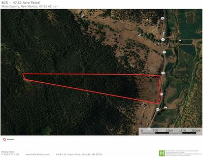 47.82 ACRES STATE ROAD 121, Holman, NM 87723 - Photo 2