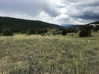 47.82 ACRES STATE ROAD 121, Holman, NM 87723 - Photo 1
