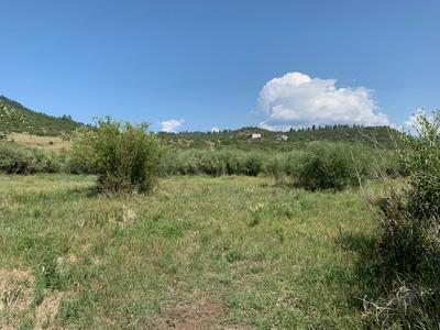 LOTS 105 & 106 RIO CHAMITA ESTATES, Chama, NM 87520 - Photo 2