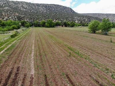 VILLANUEVA 9 AC FARM, Villanueva, NM 87583 - Photo 2