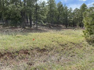 5 COLIBRI CT, Pecos, NM 87552 - Photo 1