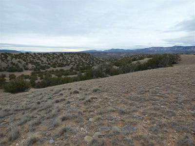 LOT 22 HUNTER DRIVE, Medanales, NM 87548 - Photo 2