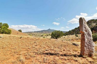 193 COUNTY ROAD 203, YOUNGSVILLE, NM 87064 - Photo 2