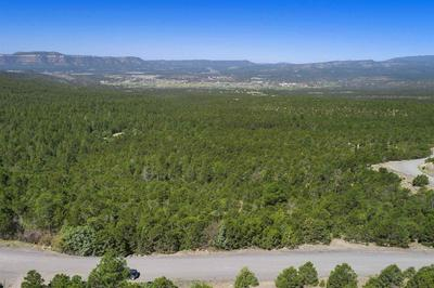 47 SILVER FEATHER TRL LOT 6, Pecos, NM 87552 - Photo 2