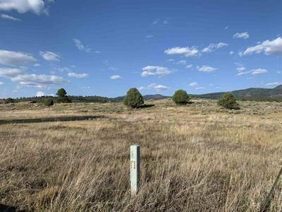 TBD PRIVATE DRIVE 1791, Chama, NM 87520 - Photo 1