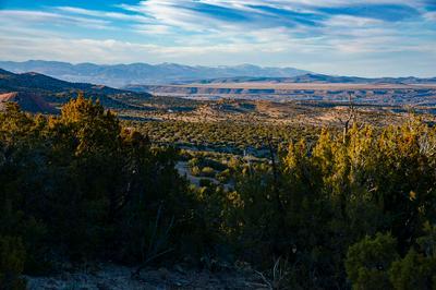 21 WILD MOUNTAIN ROAD, Cerrillos, NM 87010 - Photo 1