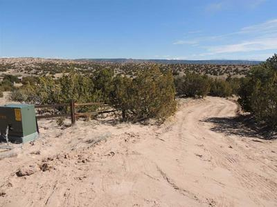 LOT 3 THREE RIVERS ESTS, Medanales, NM 87548 - Photo 1