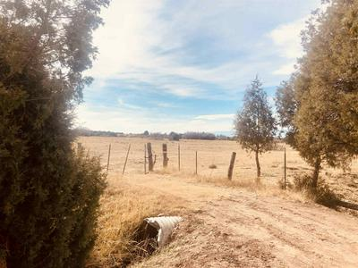 PARCEL 5 COUNTY RD 77, Truchas, NM 87578 - Photo 2