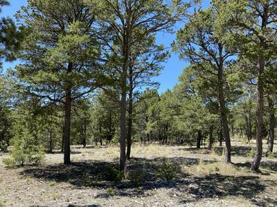 10 WILD WING CIR, Pecos, NM 87552 - Photo 1