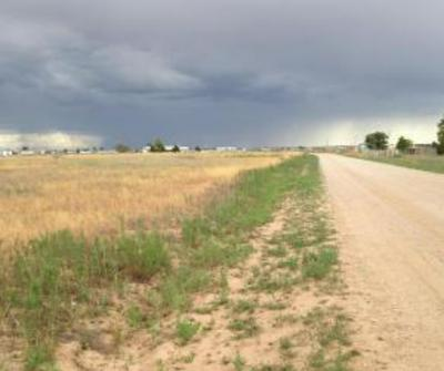 TRACT C MEADOW LANE, Moriarty, NM 87035 - Photo 2
