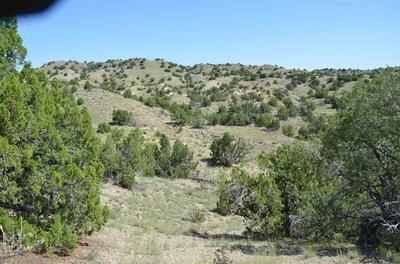 3243 STATE HIGHWAY 14 N, Cerrillos, NM 87010 - Photo 1