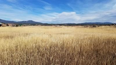 BACK OF 48 LOWER LLANO ROAD, Penasco, NM 87579 - Photo 2