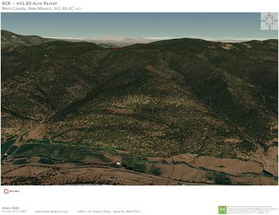 441.89 ACRES STATE ROAD 121, Holman, NM 87723 - Photo 2