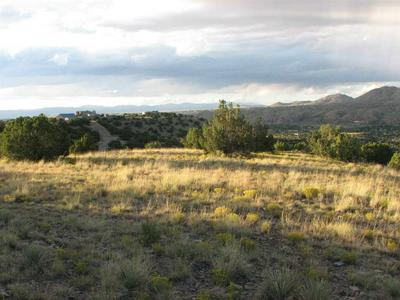 107 GOLDMINE RD, Cerrillos, NM 87010 - Photo 1