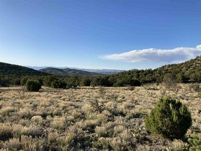 100 ORTIZ MOUNTAIN DRIVE, Cerrillos, NM 87010 - Photo 1
