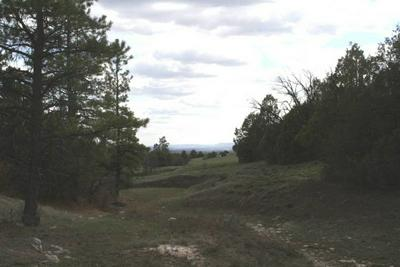 UNIT 1 TRACT 29 PONDEROSA, Chama, NM 87520 - Photo 1