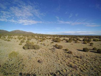 175 COW MILL RD, STANLEY, NM 87056 - Photo 2