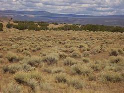 7 PIEDRA LUMBRAS GRANT, Youngsville, NM 87064 - Photo 2