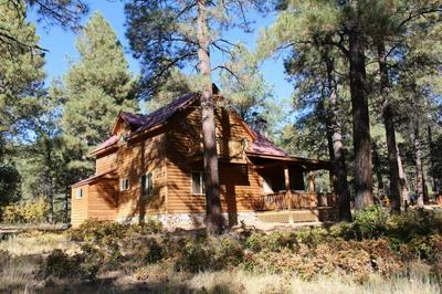 82 PD 1754 (SHADOW ROAD), CHAMA, NM 87520 - Photo 2