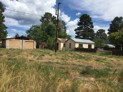 477 7TH ST, CHAMA, NM 87520 - Photo 2