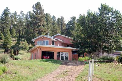 254 HWY 266 SAPELLO FARM AND HOME, Sapello, NM 87745 - Photo 2