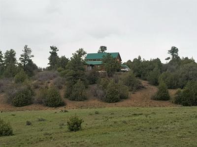 140 ELK DRIVE, CHAMA, NM 87520 - Photo 2