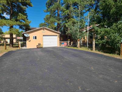 451 SANDOVAL ST, Chama, NM 87520 - Photo 2