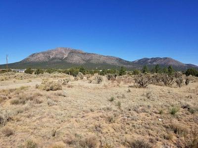 224 ENTRANOSA RD, Edgewood, NM 87015 - Photo 1