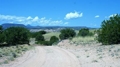 0 CR 142, Medanales, NM 87548 - Photo 2