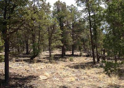 15 WILD WING CIR, Pecos, NM 87552 - Photo 1