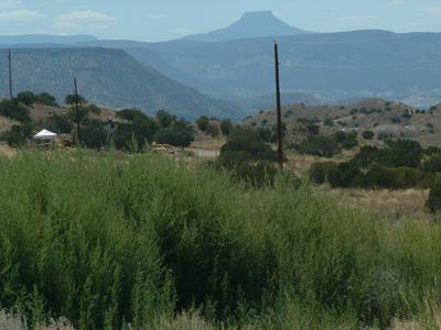 HWY 554, Abiquiu, NM 87510 - Photo 2