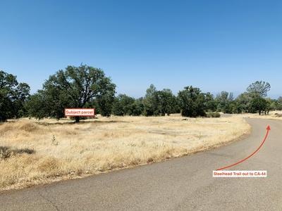 STEELHEAD TRL 4.72 ACRES, Shingletown, CA 96088 - Photo 2
