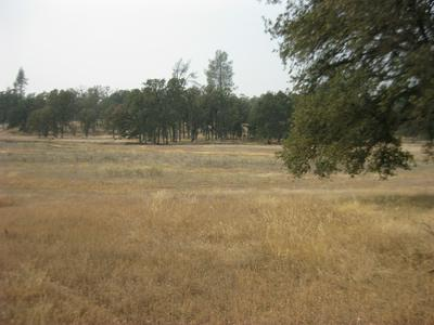 TWO FEATHERS RD., Cottonwood, CA 96022 - Photo 1