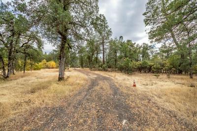 GLENDENNING, Whitmore, CA 96096 - Photo 1